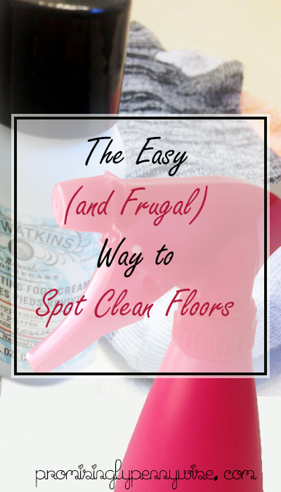 The easy and frugal way to spot clean your floors, without a mop!