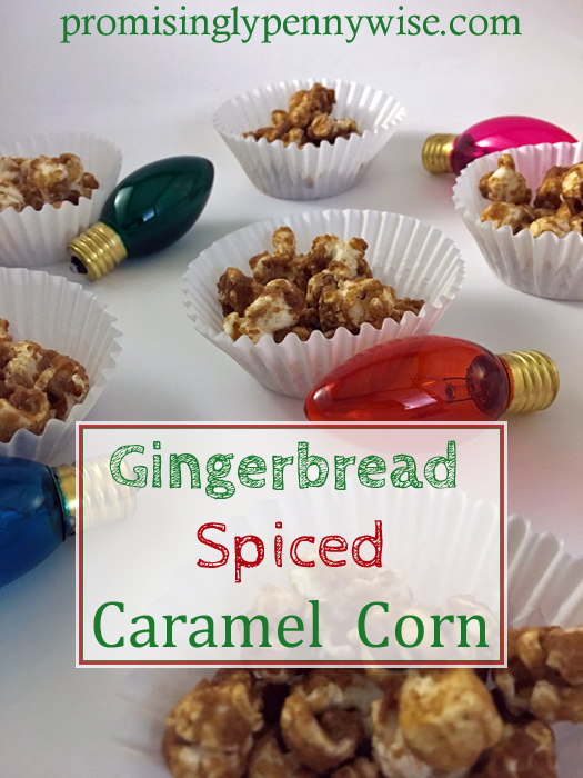 Gingerbread Spiced Caramel Corn: So delicious! Great gift idea for friends, neighbors, teachers and coworkers. Also a great gluten free dessert for potlucks!