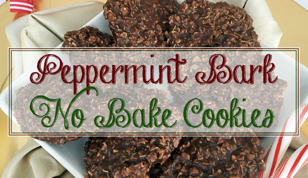 Peppermin Bark No Bake Cookies- Gluten free and perfect for the holidays!